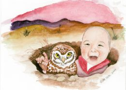 Burrowing Owl art cards